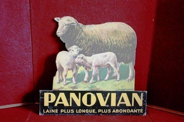Panovian Sheep Advertising Cut Out Card Arriving Nov