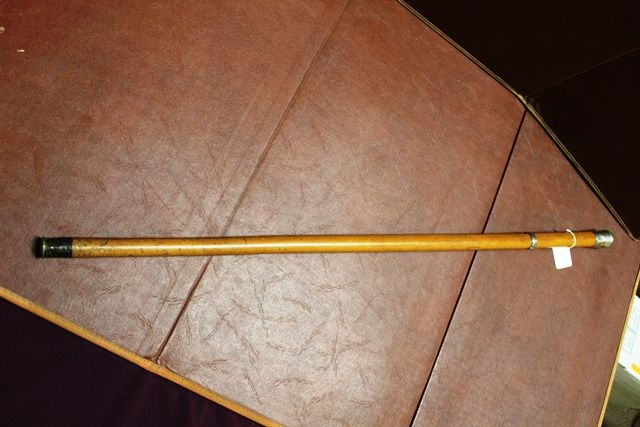 Antique Malaca Silver Top Cane