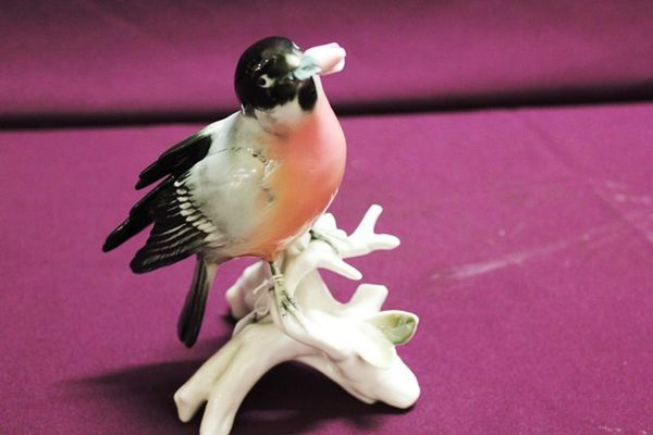 Karl Ens German Porcelain Bird Figure