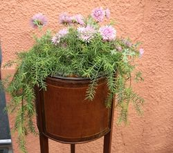 Edwardian Inlaid Planter