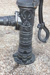 Cast Iron D Handle Village Pump