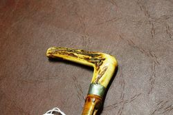 Antique Stag horn Silver Mounted Cane