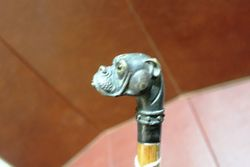 Bronze Dog Head Handled Walking Stick