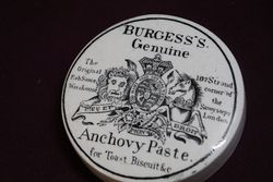 Burgessand39s Genuine Anchovy Paste