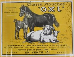 French OXI Pictorial Veterinary Advertising Card